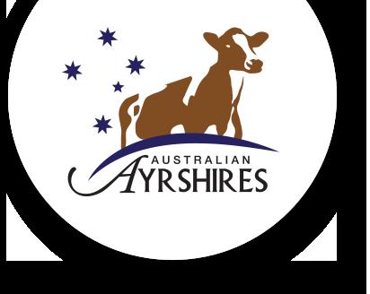 Australian Ayrshires